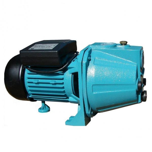 Kreiselpumpe Gartenpumpe 1100 Watt 3600 L/h 5 bar Messingrad JET100A