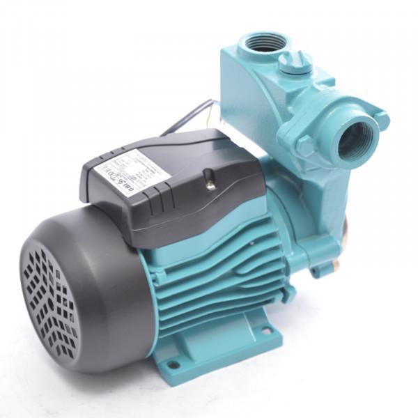 Kreiselpumpe Gartenpumpe WZI250 - 250 Watt 2100 L/h 3,5 bar